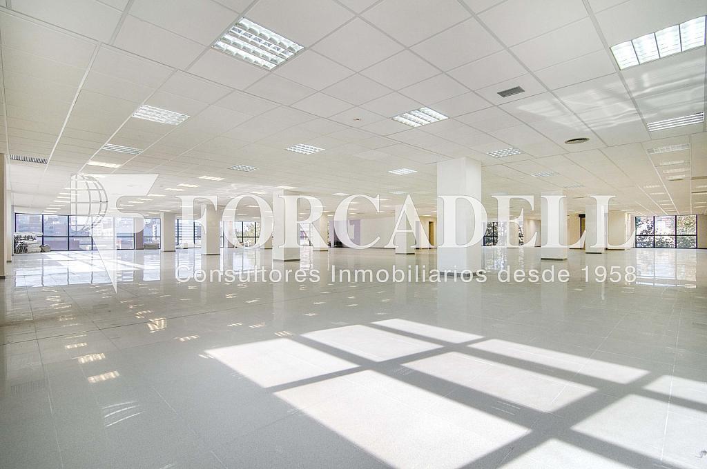 _DSC3570_retoc - Oficina en alquiler en calle Veneçuela, Provençals del Poblenou en Barcelona - 263426640