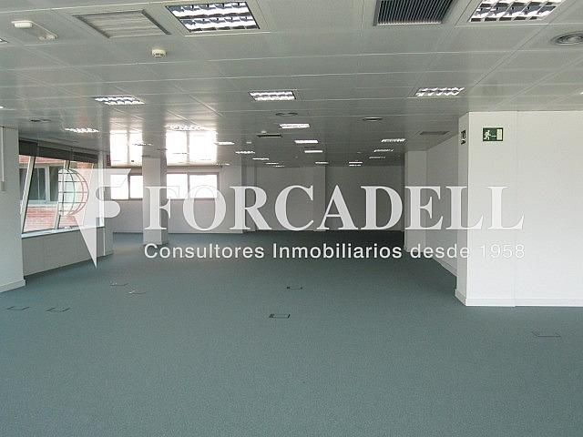Imagen 042 - Oficina en alquiler en calle Gran Via de Les Corts Catalanes, Sants-Badal en Barcelona - 263427297