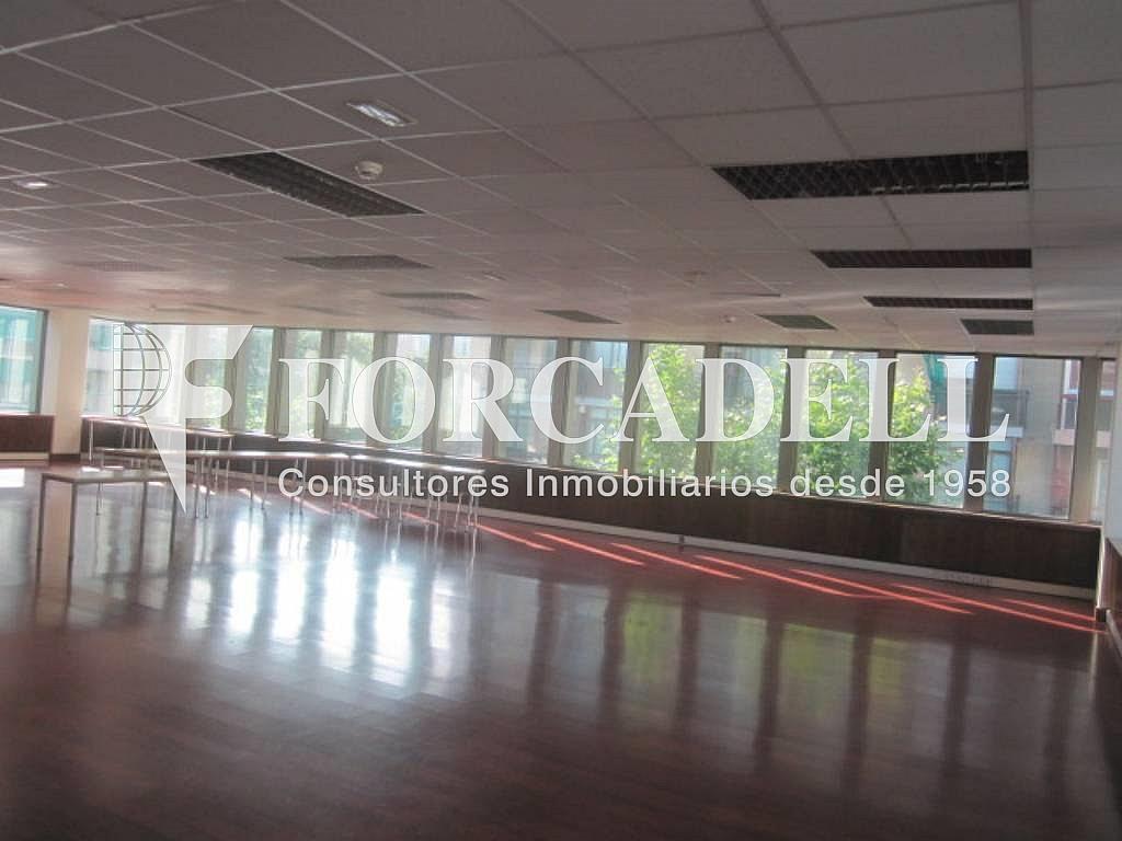IMG_6659 - Oficina en alquiler en calle Entença, Eixample esquerra en Barcelona - 263427987