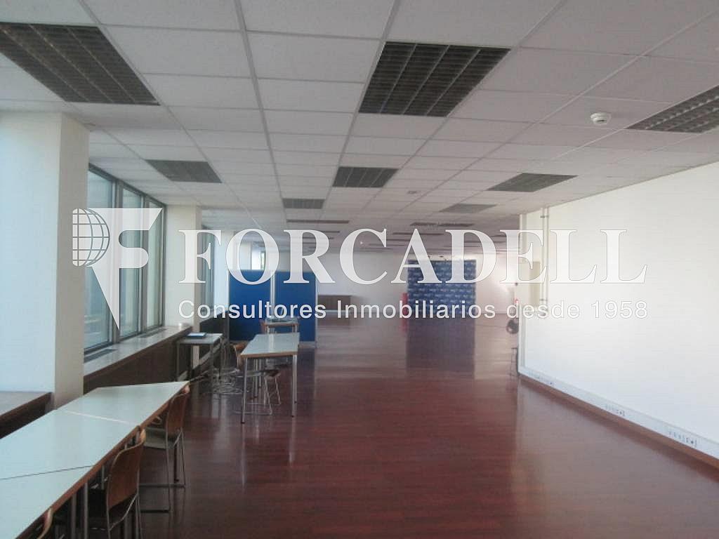 IMG_6661 - Oficina en alquiler en calle Entença, Eixample esquerra en Barcelona - 263427990