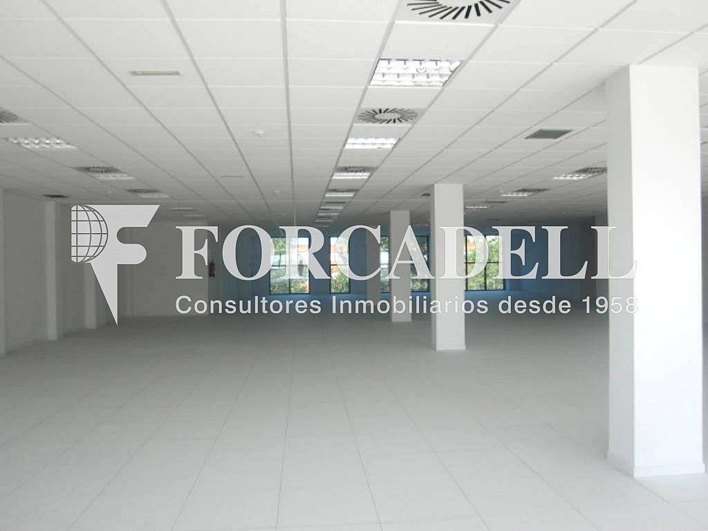 8 - Oficina en alquiler en calle Marina, Centre en Hospitalet de Llobregat, L´ - 263428026