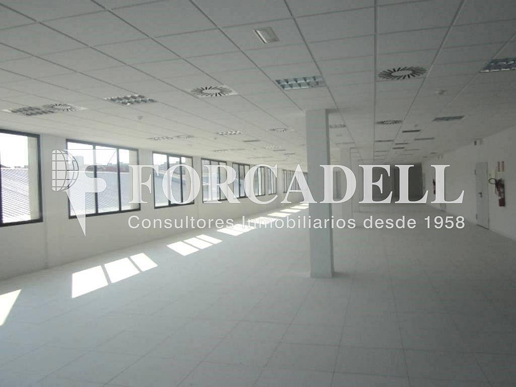 11 - Oficina en alquiler en calle Marina, Centre en Hospitalet de Llobregat, L´ - 263428035