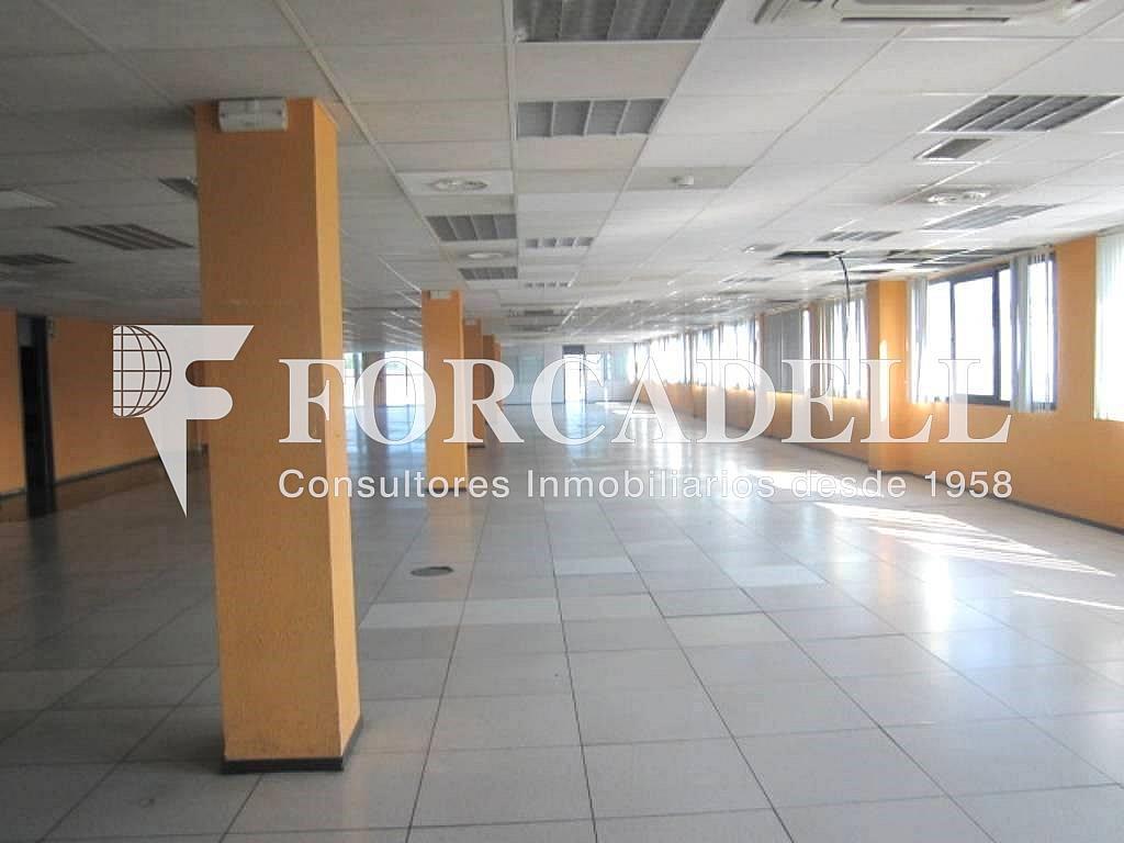 12 - Oficina en alquiler en calle Marina, Centre en Hospitalet de Llobregat, L´ - 263428038