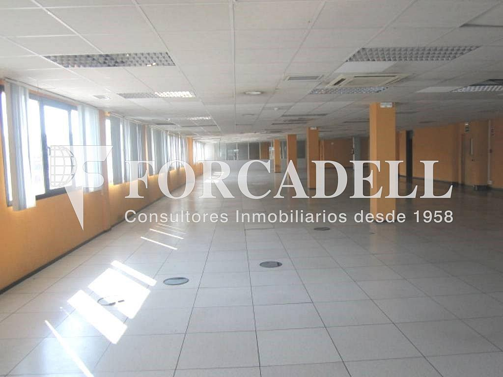 14 - Oficina en alquiler en calle Marina, Centre en Hospitalet de Llobregat, L´ - 263428080
