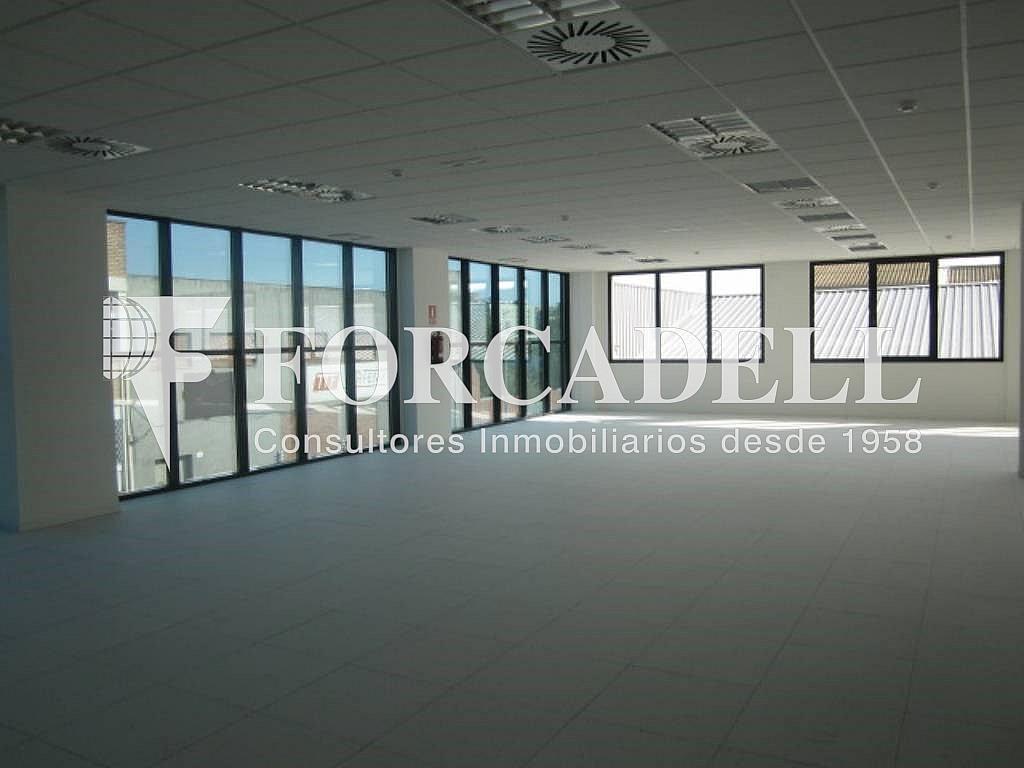 5 - Oficina en alquiler en calle Marina, Centre en Hospitalet de Llobregat, L´ - 263428095