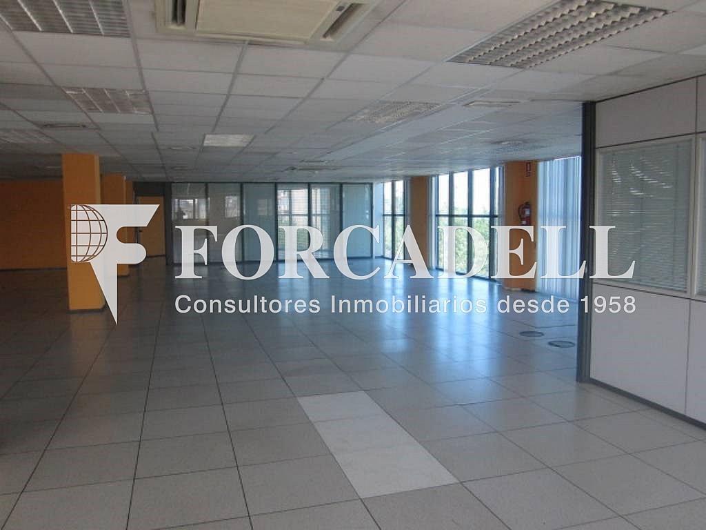 6 - Oficina en alquiler en calle Marina, Centre en Hospitalet de Llobregat, L´ - 263428098