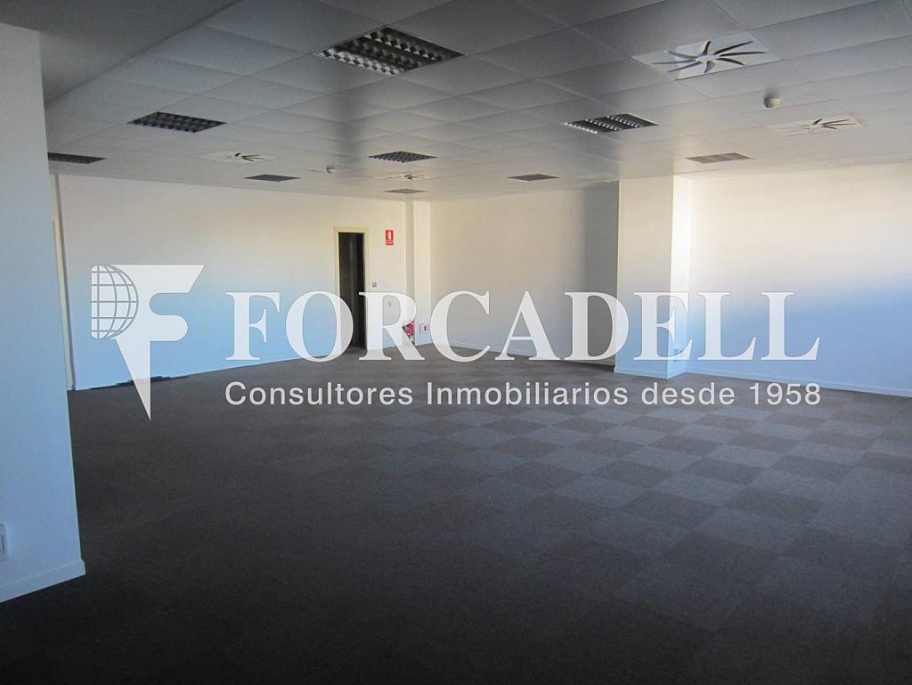 IMG_0193 - Oficina en alquiler en calle Cornellà, Esplugues de Llobregat - 263428119
