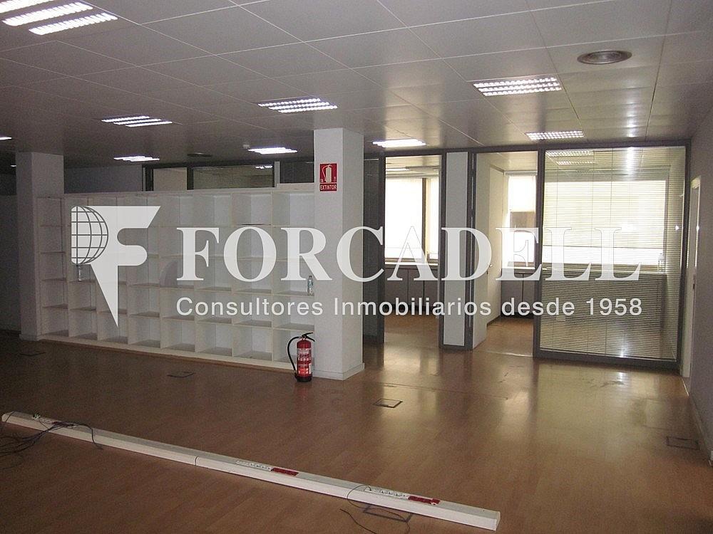 Imagen 240 - Oficina en alquiler en calle Diagonal, Les corts en Barcelona - 263429427