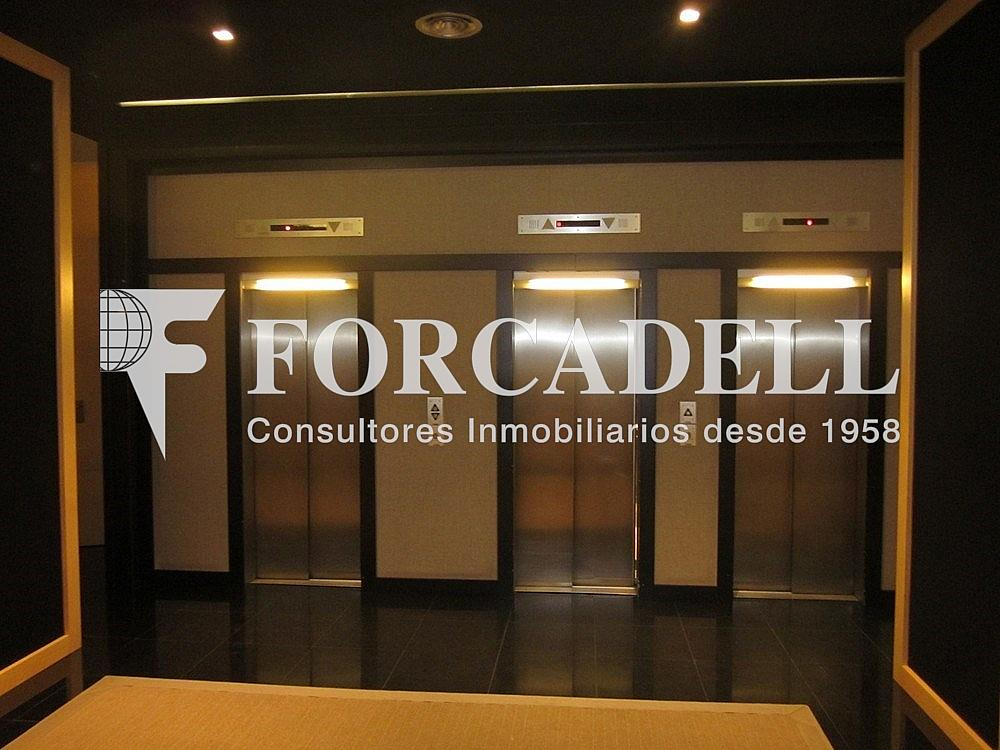 Imagen 204 - Oficina en alquiler en calle Diagonal, Les corts en Barcelona - 263429460
