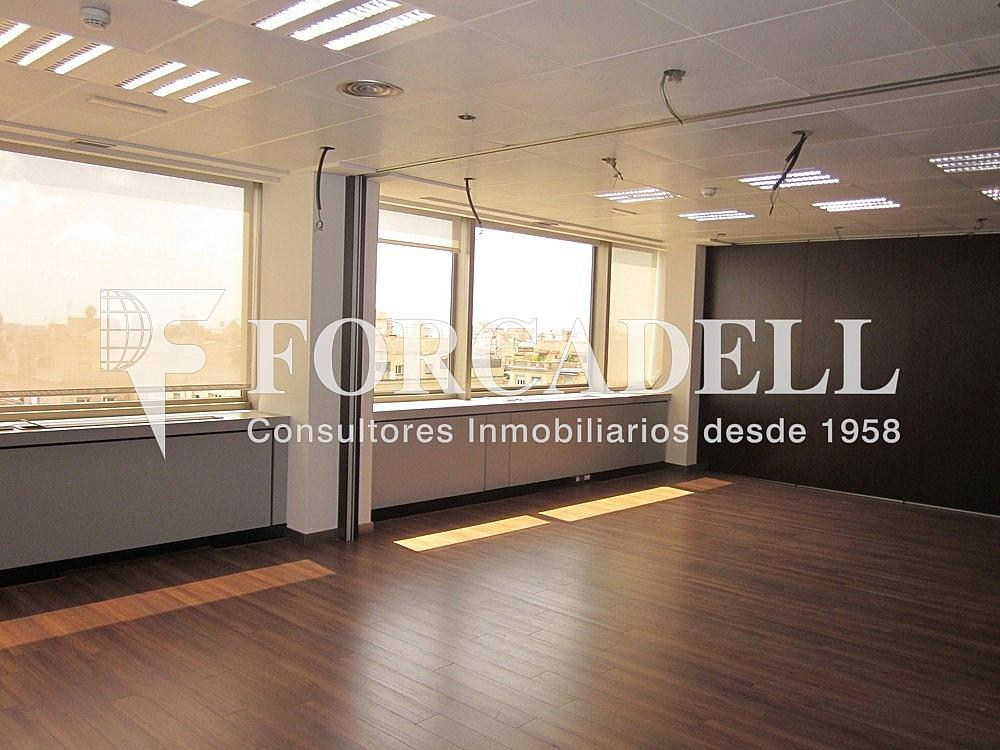Imagen 235 - Oficina en alquiler en calle Diagonal, Les corts en Barcelona - 263429475