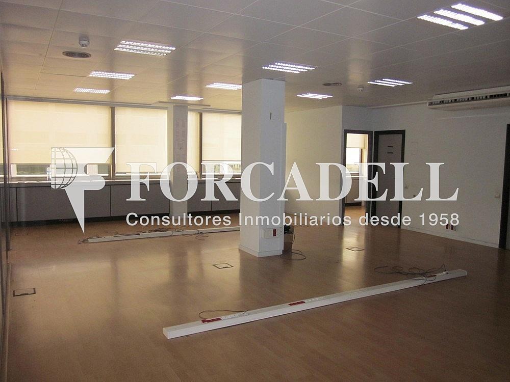 Imagen 238 - Oficina en alquiler en calle Diagonal, Les corts en Barcelona - 263429481
