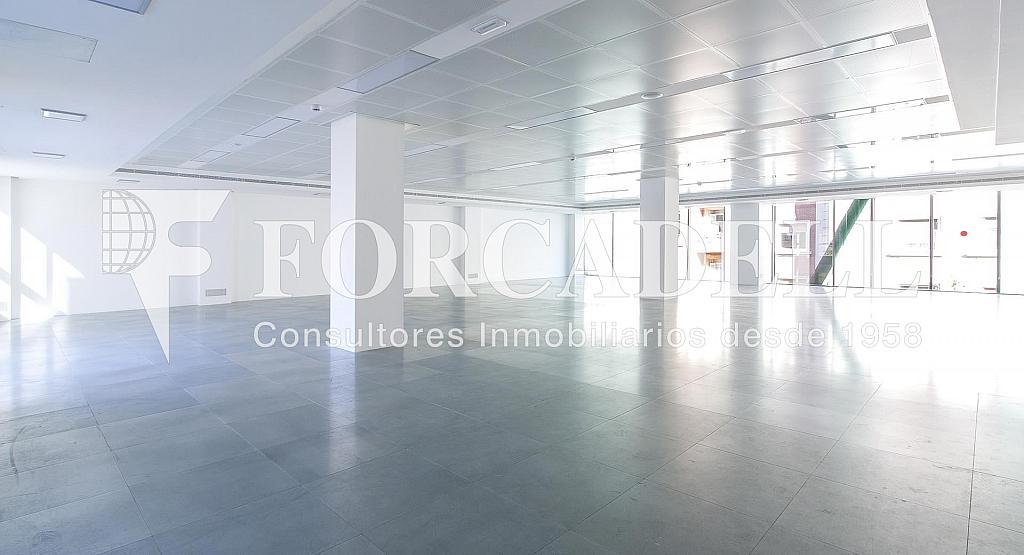 Travessera-de-gracia-amigo-1449734983 - Oficina en alquiler en calle Travessera de Gràcia, Sant Gervasi – Galvany en Barcelona - 380195940