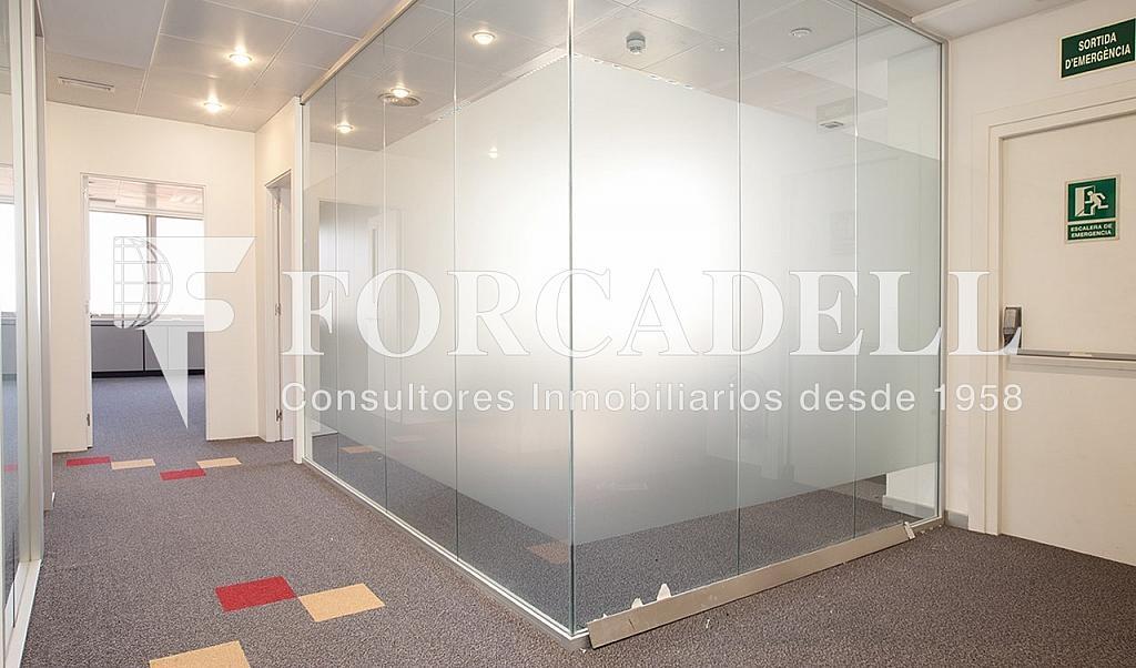 0304 2 - Oficina en alquiler en calle Diagonal, Les corts en Barcelona - 341270274