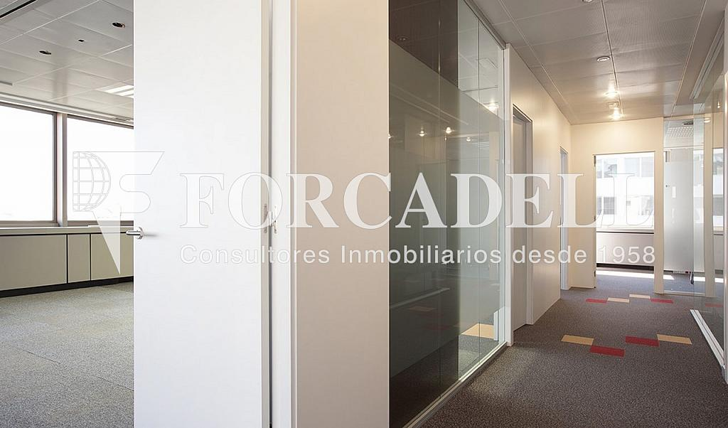0304 5 - Oficina en alquiler en calle Diagonal, Les corts en Barcelona - 341270283