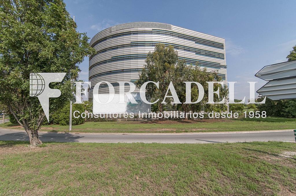 _DSC8055 - Oficina en alquiler en calle De Can Rabadà, Castelldefels - 263432850