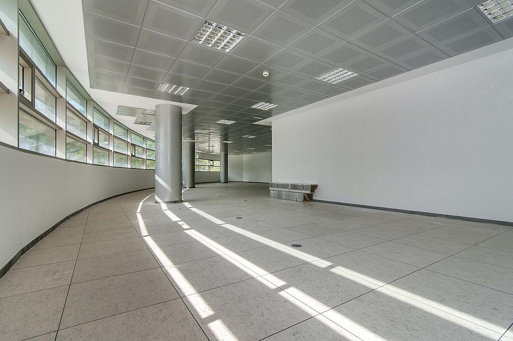 _DSC8051 - Oficina en alquiler en calle De Can Rabadà, Castelldefels - 263433180
