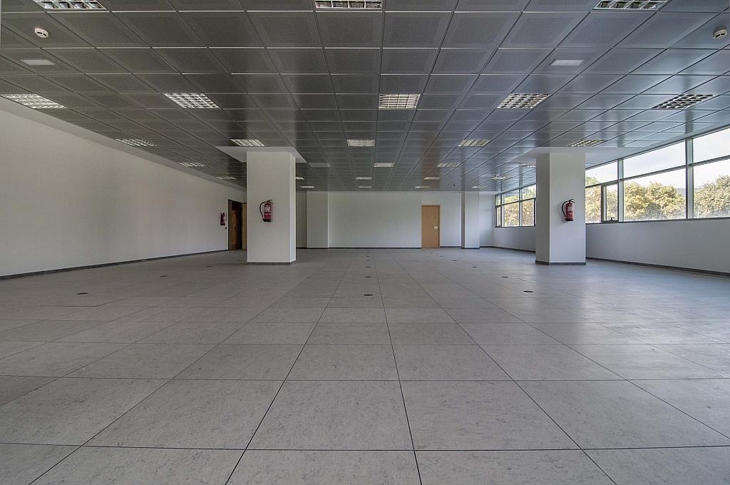 _DSC8040 - Oficina en alquiler en calle De Can Rabadà, Castelldefels - 263433186