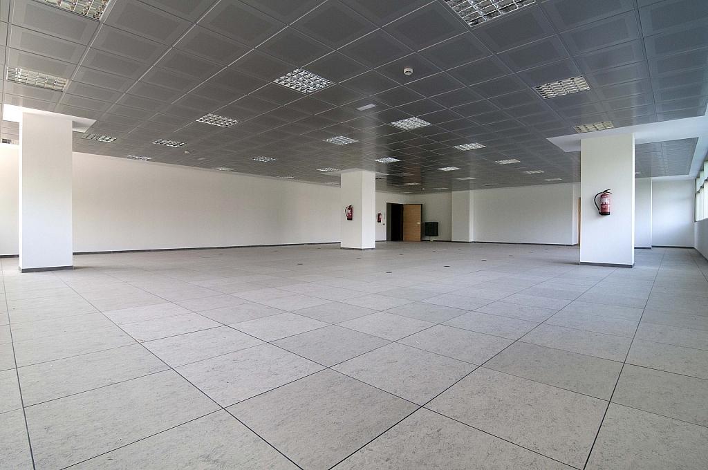 _DSC8039 - Oficina en alquiler en calle De Can Rabadà, Castelldefels - 263433189