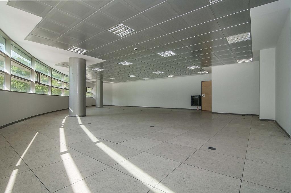_DSC8052 - Oficina en alquiler en calle De Can Rabadà, Castelldefels - 263433390