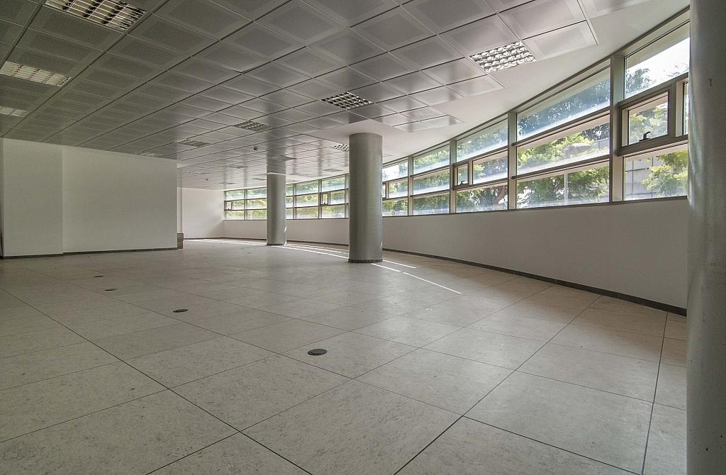 _DSC8047 - Oficina en alquiler en calle De Can Rabadà, Castelldefels - 263433396