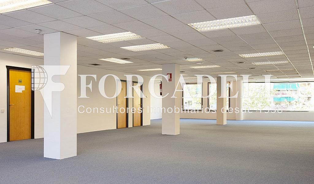 0212 03 copia - Oficina en alquiler en calle Marquès de Sentmenat, Les corts en Barcelona - 263433678