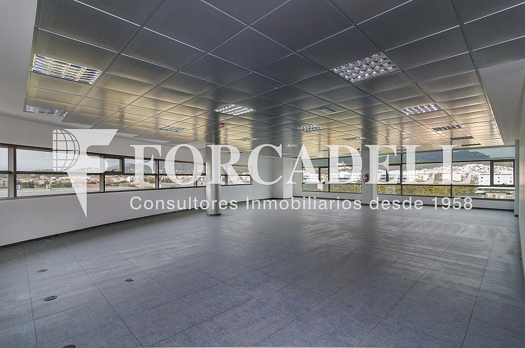 _DSC7890 - Oficina en alquiler en calle De Can Rabadà, Castelldefels - 263434005