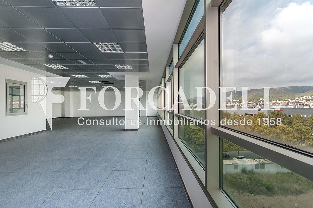 _DSC7916 - Oficina en alquiler en calle De Can Rabadà, Castelldefels - 263434008