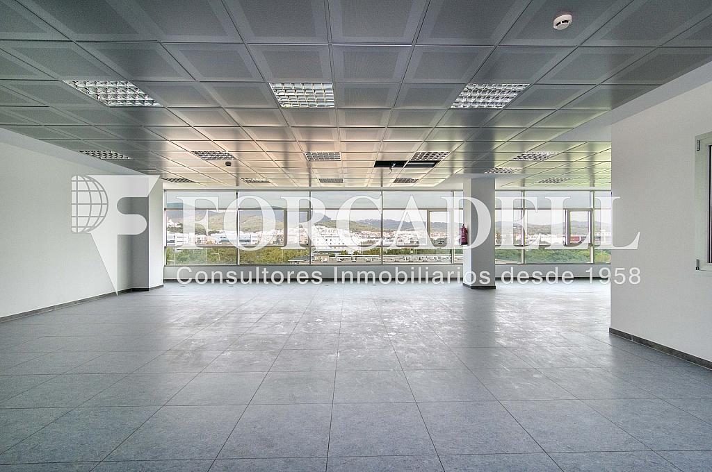 _DSC7919 - Oficina en alquiler en calle De Can Rabadà, Castelldefels - 263434011