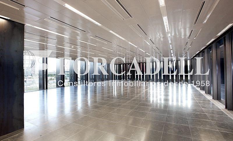 _plaza_europa_31_5 - Oficina en alquiler en calle Europa, El Gornal en Hospitalet de Llobregat, L´ - 263434938