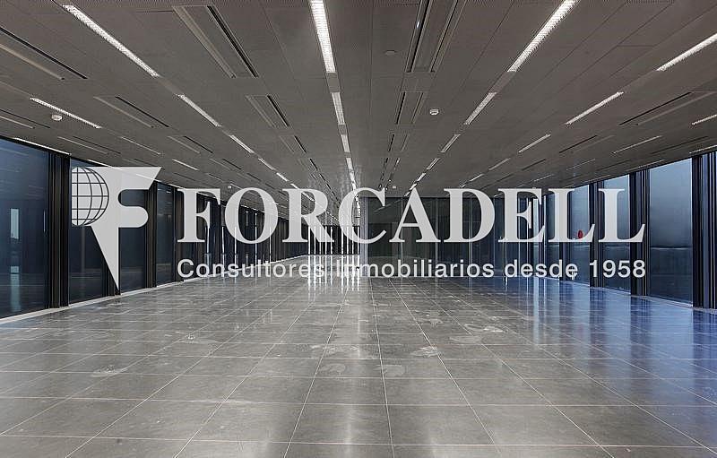 _plaza_europa_31_6 - Oficina en alquiler en calle Europa, El Gornal en Hospitalet de Llobregat, L´ - 263434941
