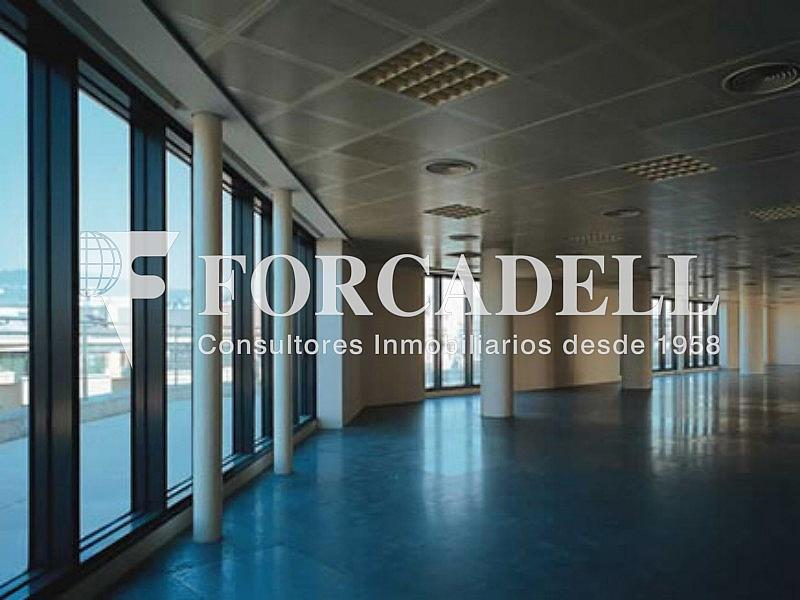Interior 1 - Oficina en alquiler en calle Berlin, Les corts en Barcelona - 263436294