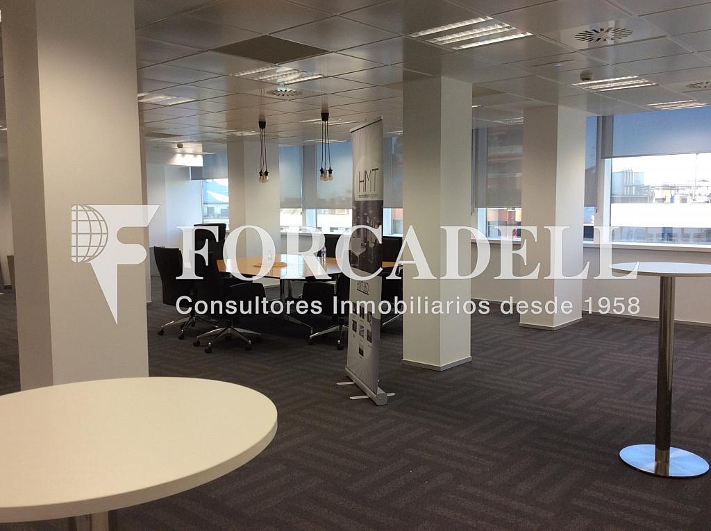 IMG_0875 - Oficina en alquiler en calle Josep Tarradellas, Eixample esquerra en Barcelona - 263426364