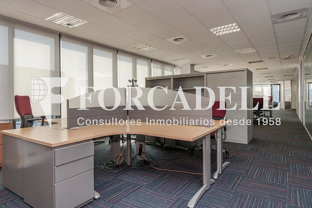 _DSC2993 - Oficina en alquiler en calle Garrotxa, Prat de Llobregat, El - 263427429