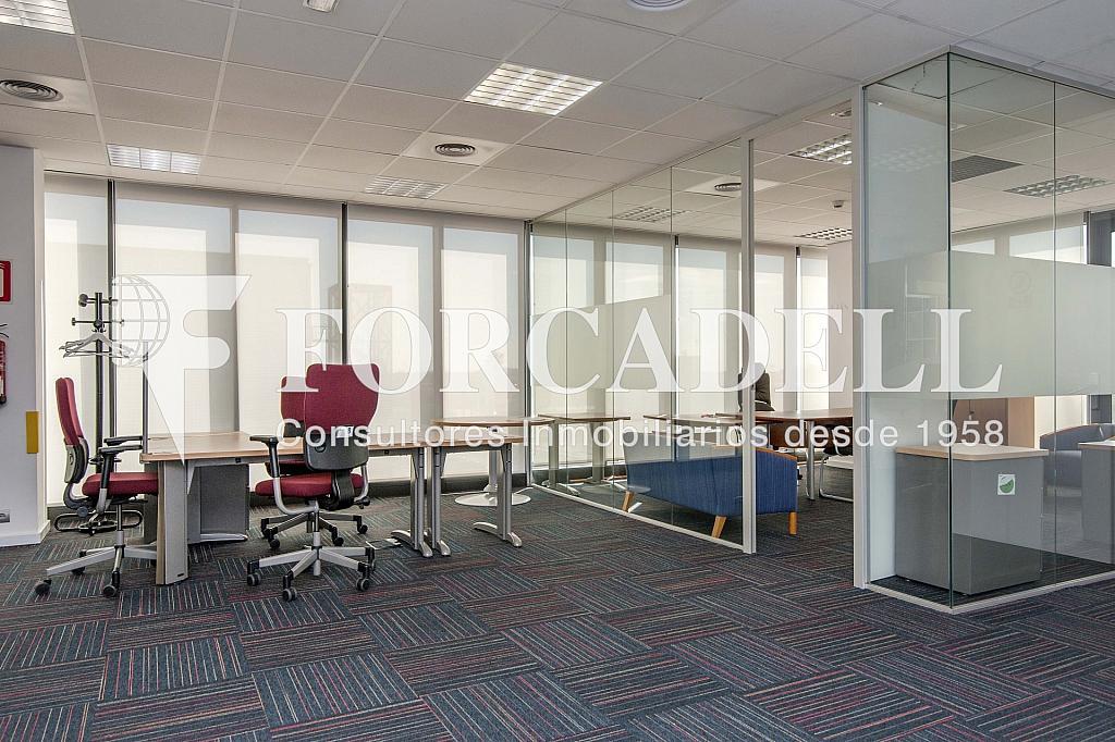 _DSC2999 - Oficina en alquiler en calle Garrotxa, Prat de Llobregat, El - 263427432