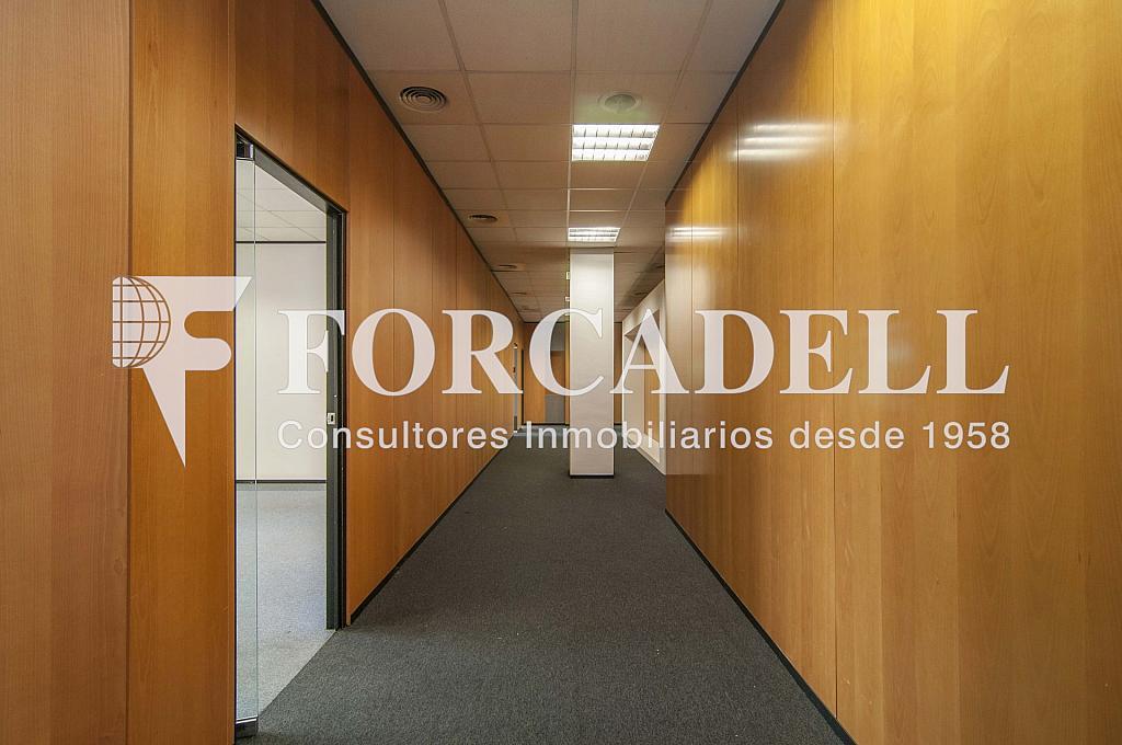 _DSC8943 - Oficina en alquiler en calle Garrotxa, Prat de Llobregat, El - 263427489
