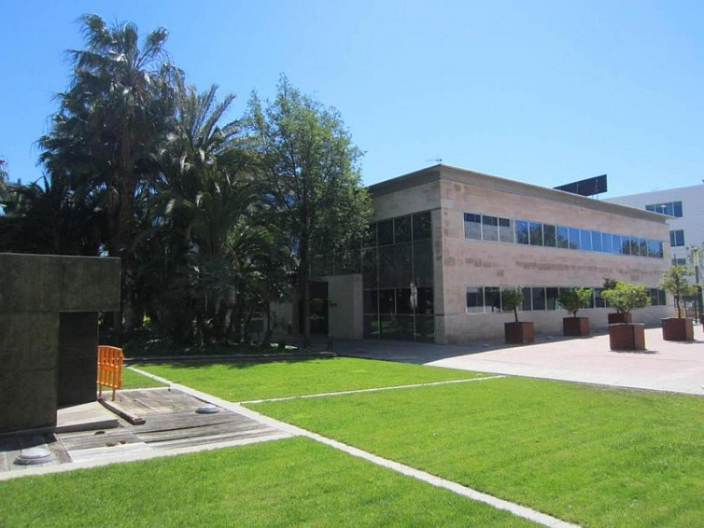 IMG_5124 - Oficina en alquiler en carretera De Lhospitalet, Cornellà de Llobregat - 263428191