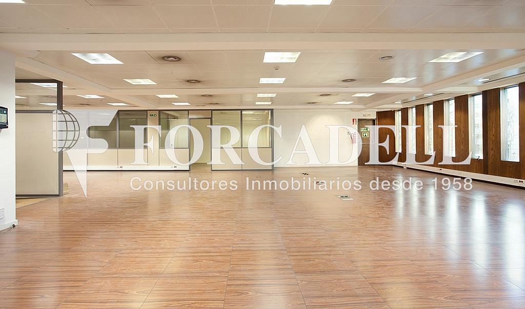 5239 08 - Oficina en alquiler en calle Catalunya, El Gótic en Barcelona - 263428428