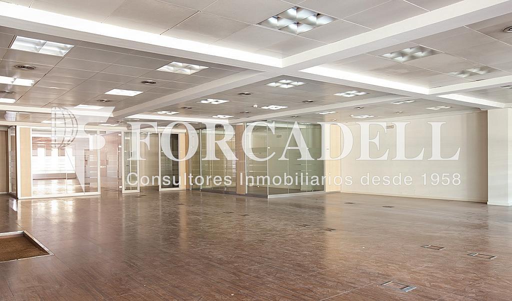 5239 02 - Oficina en alquiler en calle Catalunya, El Gótic en Barcelona - 263428431