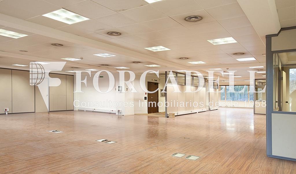 5239 04A - Oficina en alquiler en calle Catalunya, El Gótic en Barcelona - 263428440