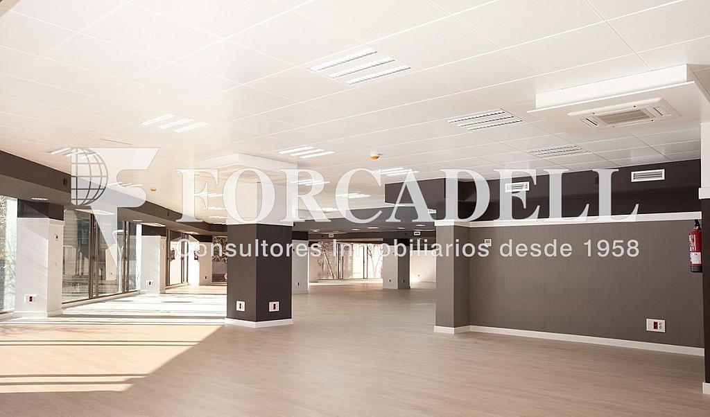 1450 05 - Oficina en alquiler en calle Diputacio, Eixample dreta en Barcelona - 263428554