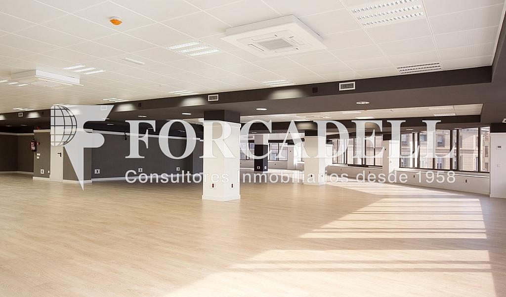 1450 7 - Oficina en alquiler en calle Diputacio, Eixample dreta en Barcelona - 263428569