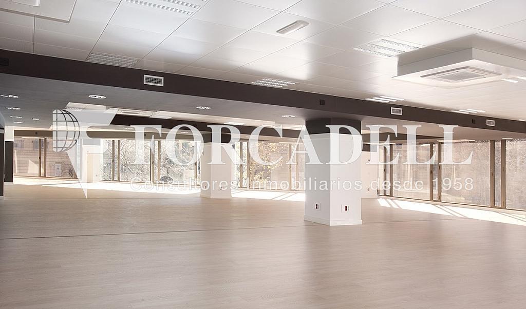 1450 01 - Oficina en alquiler en calle Diputacio, Eixample dreta en Barcelona - 263428578
