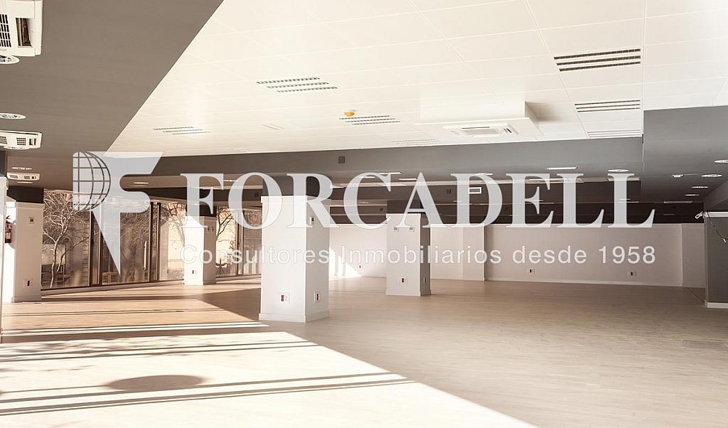 1450 04 - Oficina en alquiler en calle Diputacio, Eixample dreta en Barcelona - 263428593