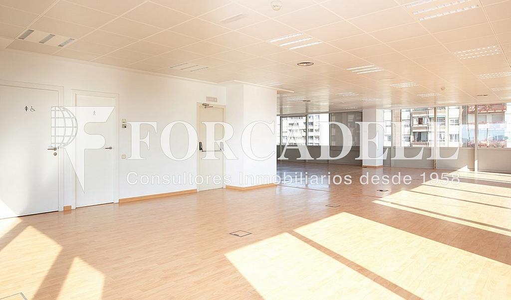 0431 04 - Oficina en alquiler en calle Tarragona, Hostafrancs en Barcelona - 324108723