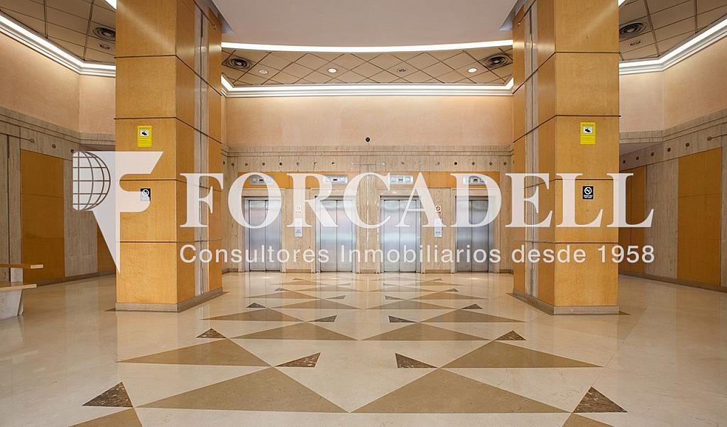 4 - Oficina en alquiler en calle Tarragona, Hostafrancs en Barcelona - 324108726