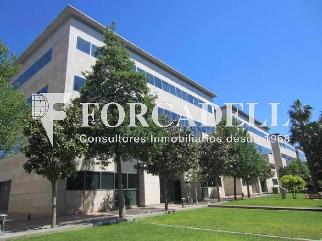 IMG_5123 - Oficina en alquiler en calle De Lhospitalet, Cornellà de Llobregat - 263430447