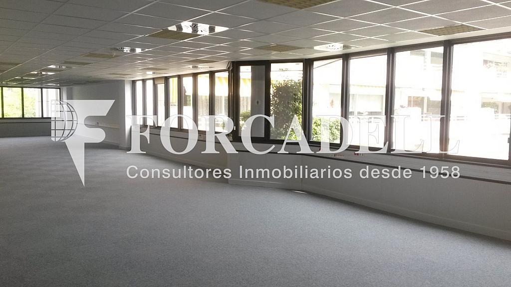 20150514_154425 - Oficina en alquiler en calle De la Caravel·la la Niña, Les corts en Barcelona - 263431470