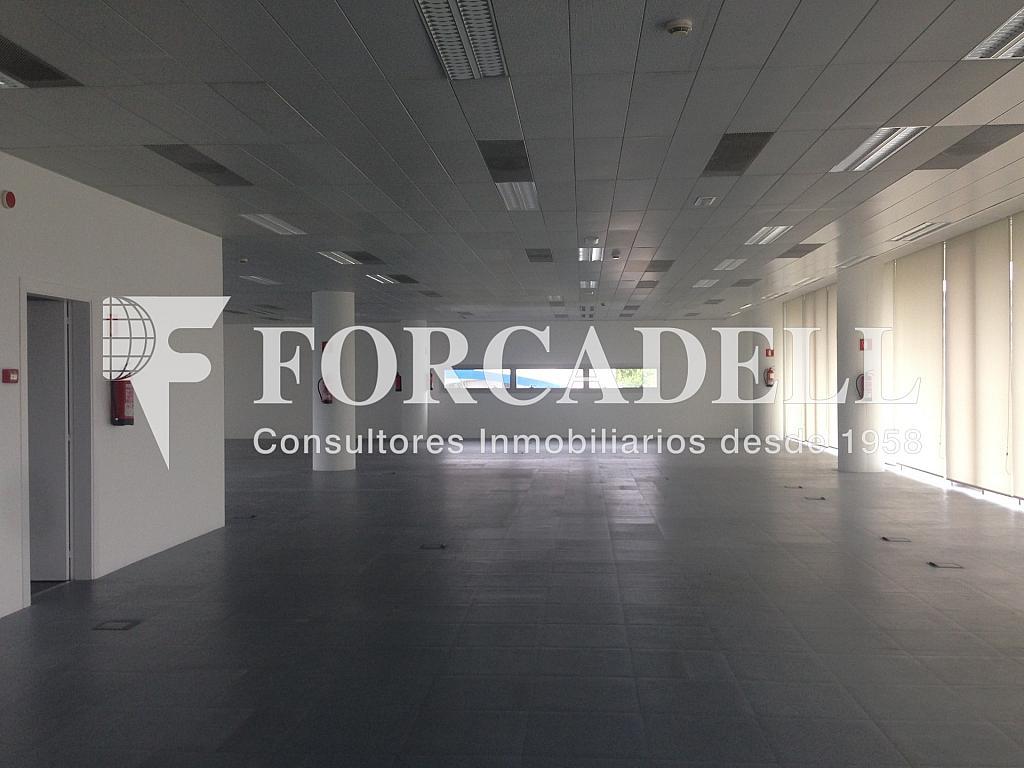 IMG_9730 - Oficina en alquiler en calle Gran Via, Santa Eulàlia en Hospitalet de Llobregat, L´ - 263431500
