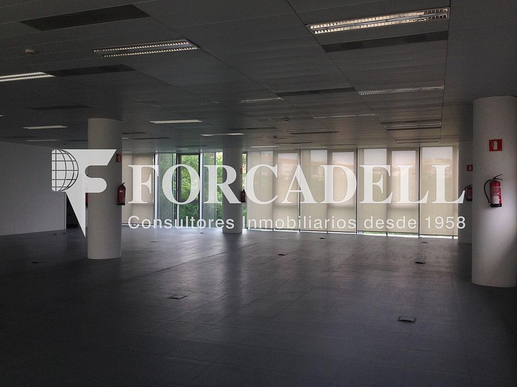 IMG_9733 - Oficina en alquiler en calle Gran Via, Santa Eulàlia en Hospitalet de Llobregat, L´ - 263431509