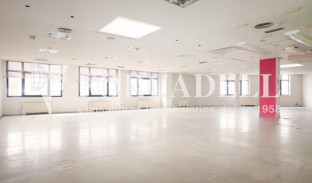 0497 01 - Oficina en alquiler en calle Zona Franca, La Marina de Port en Barcelona - 286366278
